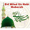 Wishing Milad